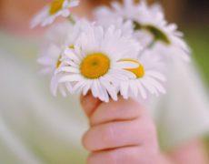 Immagine buongiorno fiori bambina