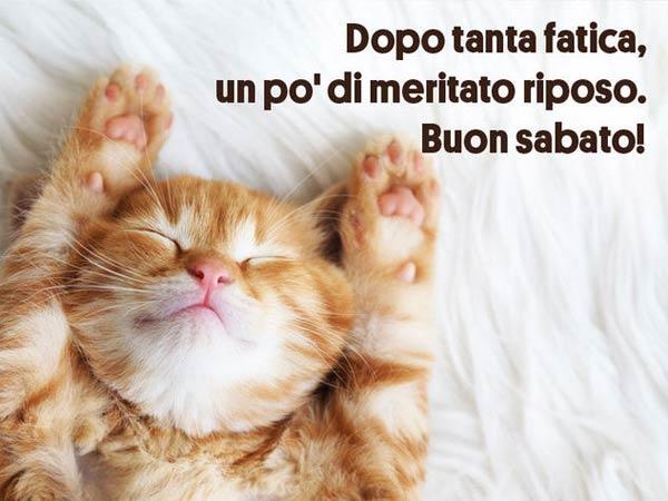 Immagini di buongiorno belle e divertenti per whatsapp ed for Buongiorno assonnato